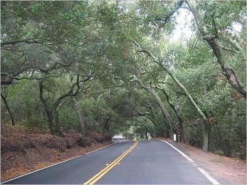 General Contractors Trabuco Canyon, CA